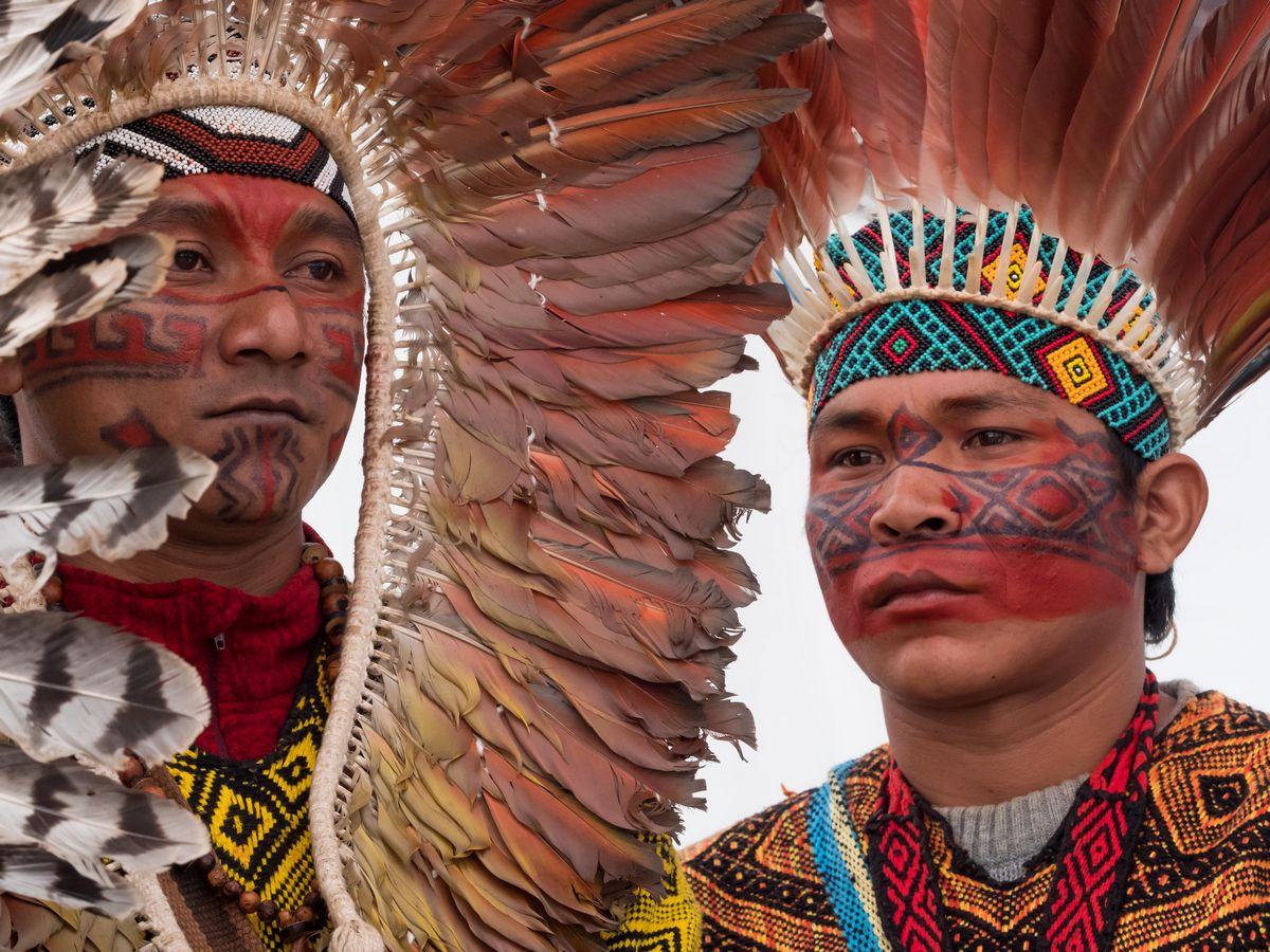 plumes d'Amazonie - 240mm f8 1/160 sec pour 1600 ziso